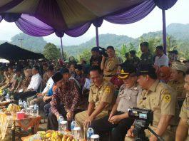 Bupati Bogor didampingi para pejabat undangan panen raya padi di Desa Cikutamahi Cariu