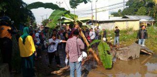 Puluhan Warga Ciawi Gelar Aksi Tanam Pohon Pisang Di Jalan Rusak Yang Tak Kunjungan Diperbaiki