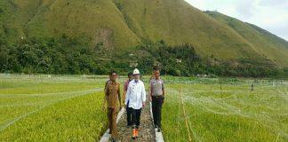 Foto: Bupati Samosir Drs.Rapidin simbolon MM disela monitoring Di Desa Boho kecamatan Sianjur Mula-Mula Samosir