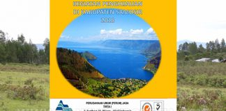 Jasa Tirta I merupakan Badan Usaha Milik Negara (BUMN) yang diberi sebagian kewenangan pemerintah dalam pengelolaan sumber daya air di wilayah sungai.
