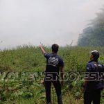 Kebakaran lahan gambut yang terjadi di wilayah Desa Cileungsi, Kecamatan Cileungsi, Kabupaten Bogor, tepatnya di lahan gambut, belakang Perum Pondok Cileungsi Permai.