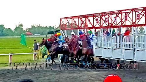 Kejuaraan Pacuan Kuda dalam rangka memperingati Hari Ulang Tahun Kabupaten Minahasa ke 591